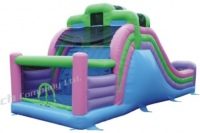 The Double Slide Bouncer