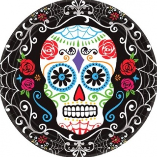 Day of the Dead Lunch Plates
