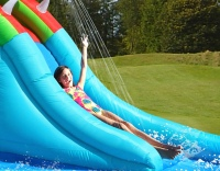 Crocodile Double Water slide